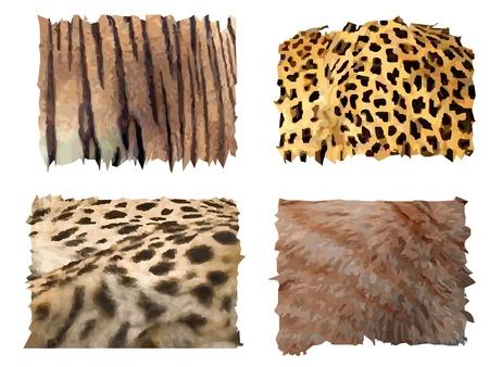 yellow hair: quattro diversi tipi di felino modelli animali da pelliccia Vettoriali