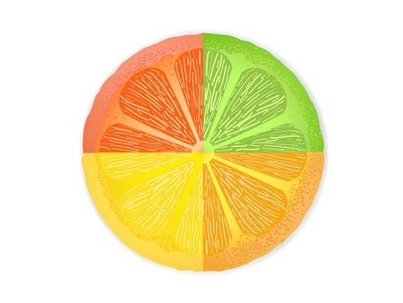 acid colors: mixed citrus fruit slices combined in one fruit slice