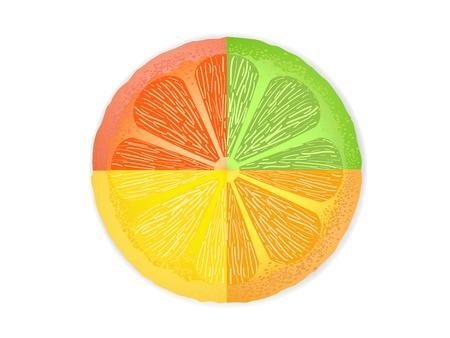 mezcla de frutas: mixtos rodajas de c�tricos combinados en el segmento de frutas una