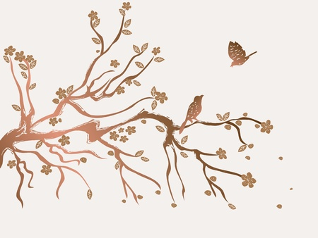 plum flowers blossom with birds in spring  Vector