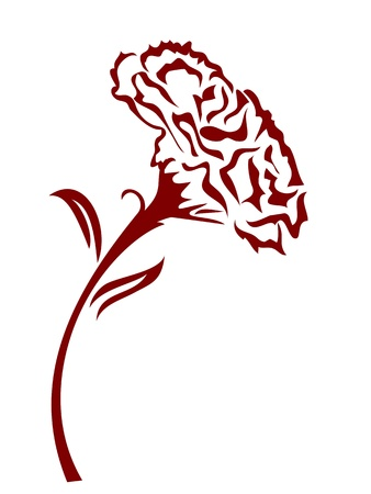 the drawing background of one red carnation flower Vector