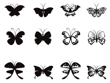 butterfly silhouette: isolated Butterfly pattern from white background