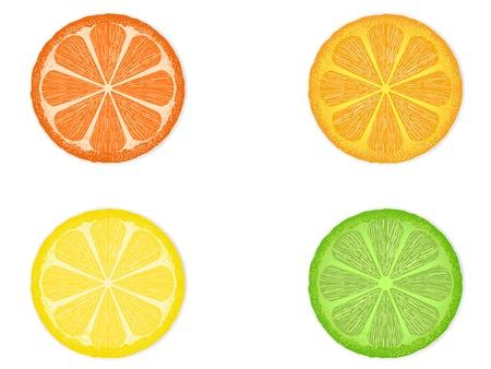 흰색 배경에 고립 된 네 개의 감귤 류의 과일 조각