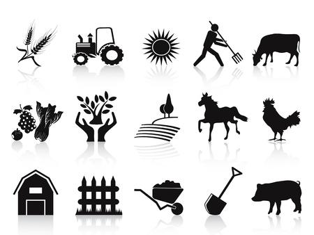 agricultura: granja aislada negro y los iconos de la agricultura que figuran en el fondo blanco