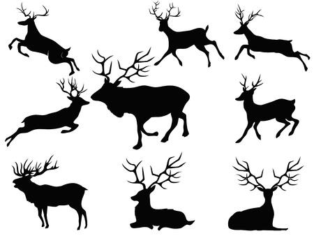 оленьи рога: изолированные черные силуэты оленей от белого фона
