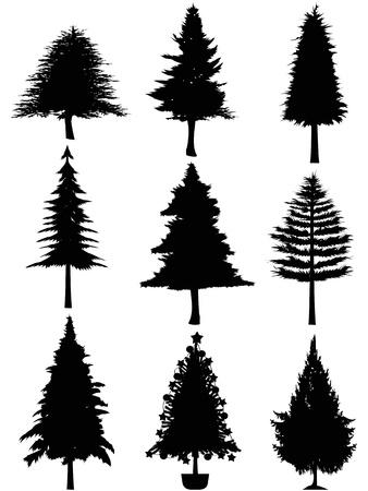 bomen zwart wit: geïsoleerde kerstboom silhouet op een witte achtergrond Stock Illustratie