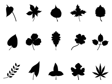 anthurium: isolated black leaves Silhouettes set from white background