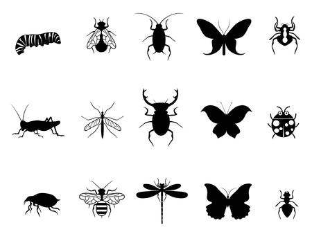 흰색 배경에서 격리 곤충 아이콘