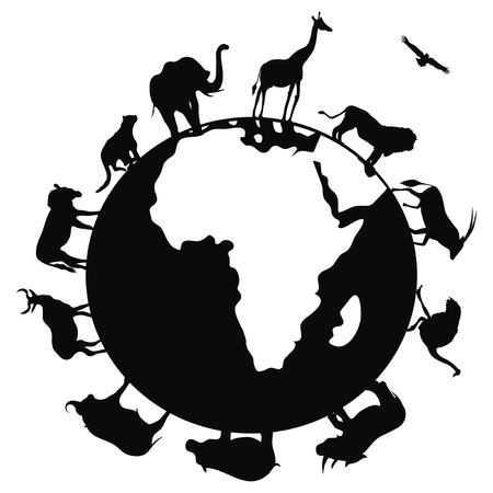 isolated africa animal around the world on white background Illustration