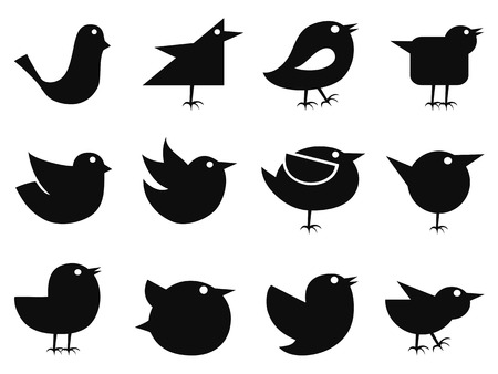 followers: isolated black social bird icons from white background