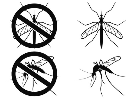 disease carrier: isolated black Mosquitoes warning symbol on white background Illustration