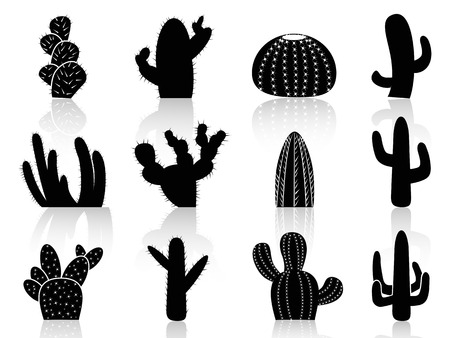 isolated cactus Silhouettes from white background