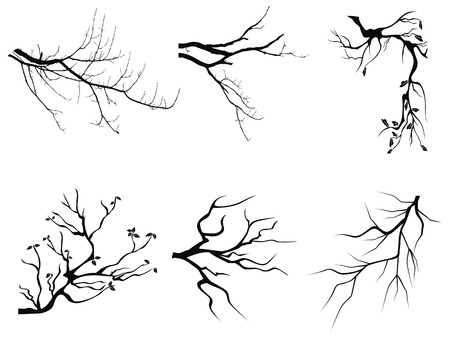 on the tree: isolated branch Silhouette shapes from white background