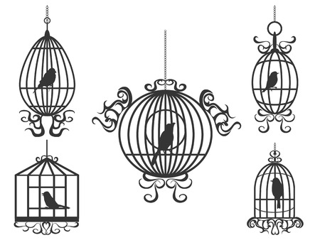 isolated birdcage with birds on white background