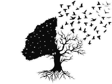oiseaux isolés volant de l'arbre sur fond blanc