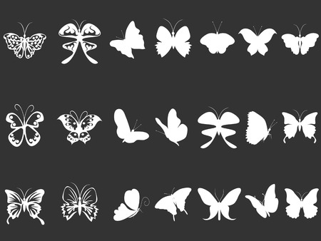 butterfly isolated: isolated white butterfly silhouettes from black background