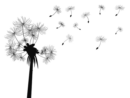 blowing of the wind: isolated dandelion flying seeds from white background Illustration