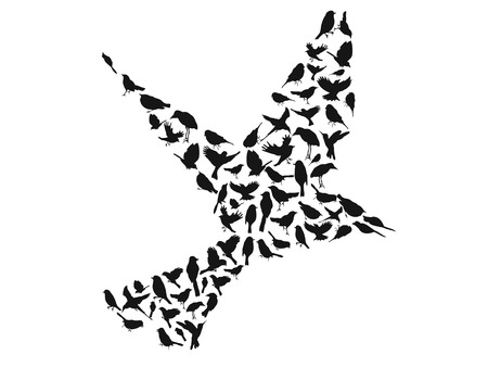 finch: isolated birds silhouettes group in big birds shape from white background