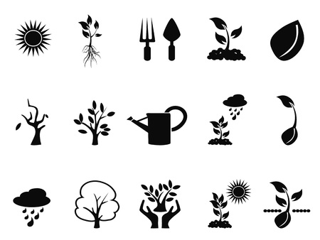 black tree: isolated black tree sprout growing icons set on white background
