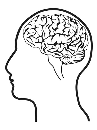 black man thinking: isolated human head with brain from white background Illustration