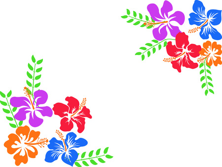 Isolated colored hibiscus vector