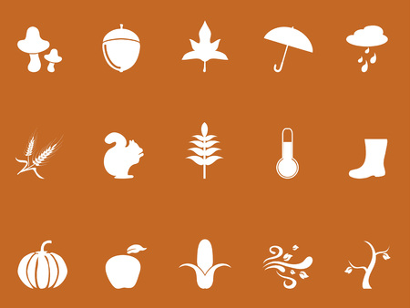 White autumn icons from brown background