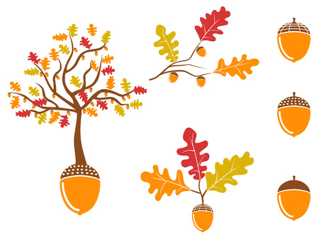 isolated color oak acorn icons set from white background