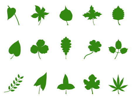 Isolated Green Leaf Silhouette Vector from white background Illustration