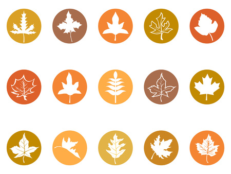 isolated maple leaves button icons from white background