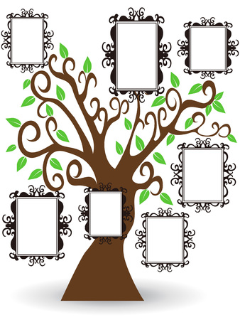 isolated pictures frame tree on white background