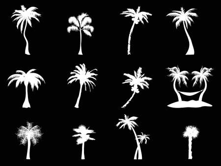 isolated white palm tree icon from black background 向量圖像