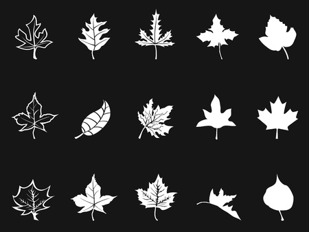 isolated white maple icons on black background