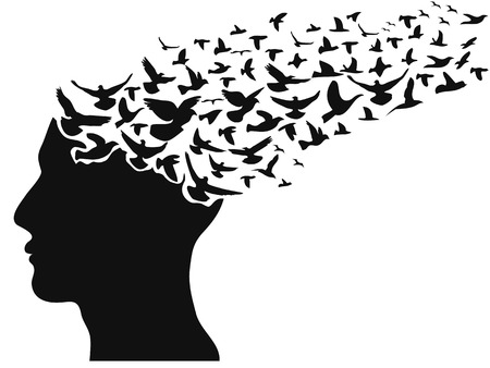 isolated birds flying human head on white background