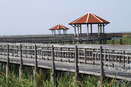 Wooden bridge and pavilion photo