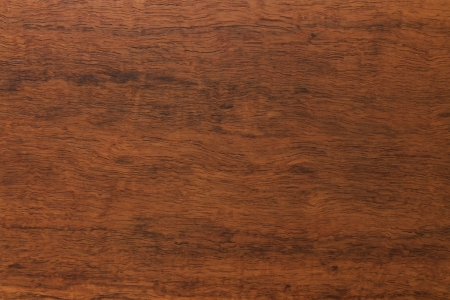 hard wood: Wooden texture made by nature