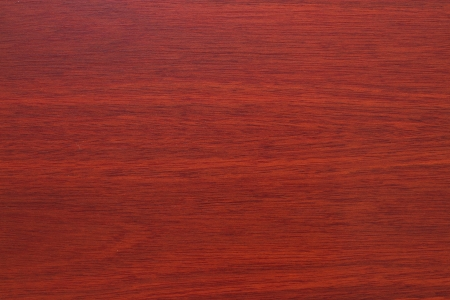 Veneer wood texture for interior Stock Photo - 15252031