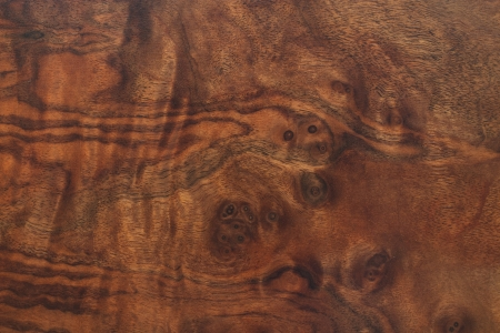 Dark brown wood texture with little eyes Stock Photo