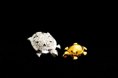 Silver and gold turtles in the universe Stock Photo - 17206284
