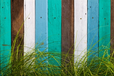 Colorful wooden wall with grass photo