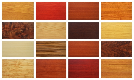 sample of wood textures for interior
