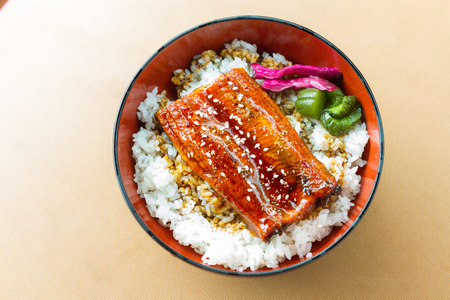 Grilled eel with sauce on rice