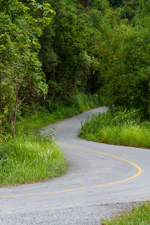 s curve: shady s curve road on mountain