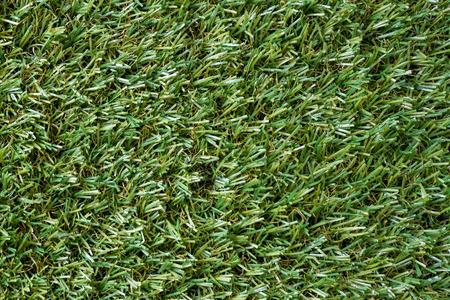 background  grass: green turf background, grass texture Stock Photo