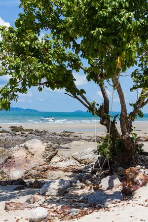 shady: shady corner with swing under big tree on the beach Stock Photo
