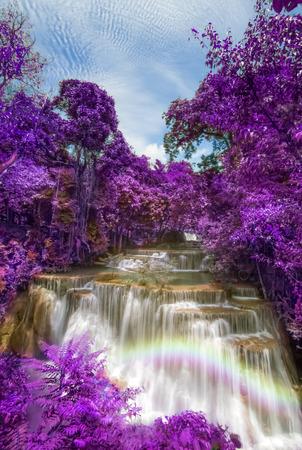 khamin: purple leaves at Huay mae khamin waterfalls, Thailand Stock Photo