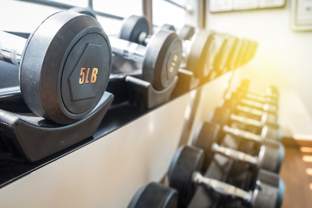 weight dumbbells on rack in fitness room