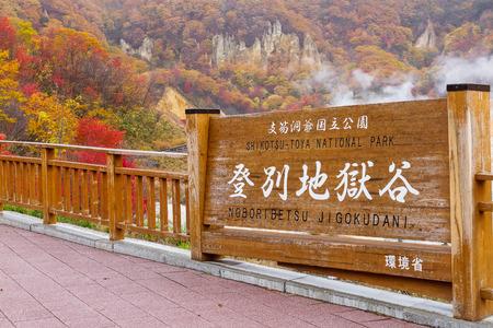 hojas de colores ver en Jigokudani valle del infierno, Hokkaido, Japón