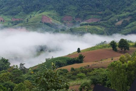 morning mist and mountain scenic at Khao Koh, Phetchabun, Thailand Stock Photo
