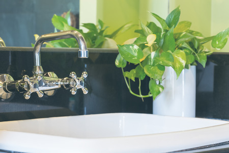 Closeup Washbasins In Bathroom Decorated With Vase Of Plant Stock