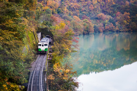 train from tunnel along tadami river in autumn